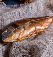শুটকি মাছ (চিংড়ি)